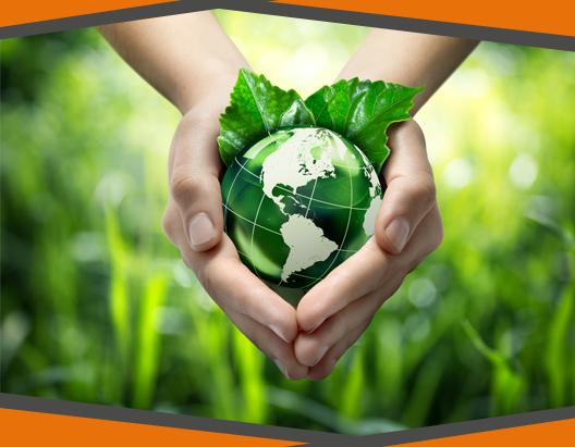 consultoria-ambiental-luem